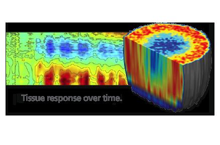 BioDynamic Imaging